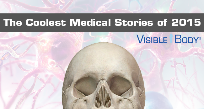 VB_Stories2k15-banner.png